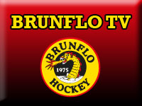 Brunflo TV - on startpage